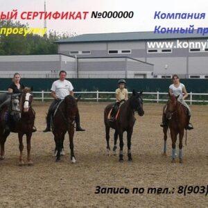 Подарочный сертификат на конную прогулку №1