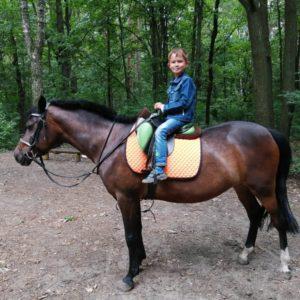 Конная прогулка для детей на пони